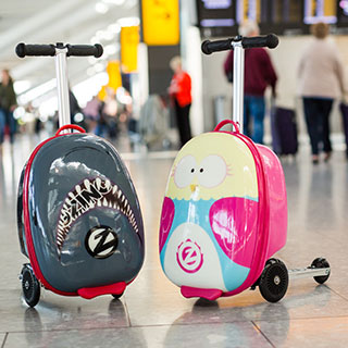 useful travel accessories:
