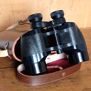 Gadgets & Gizmos: Roof prism binoculars tend are easier to bring with you on your adventures