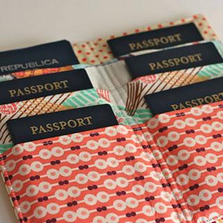 useful travel accessories: Neck passport holder