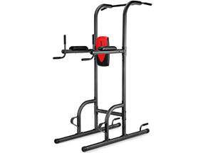 best weider power tower gym