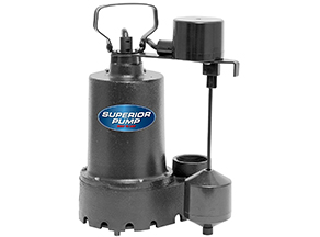 best budget sump pump
