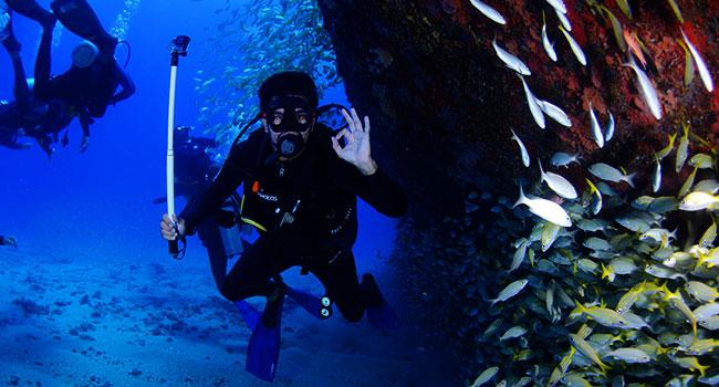scuba diving gear: Diver Mobility