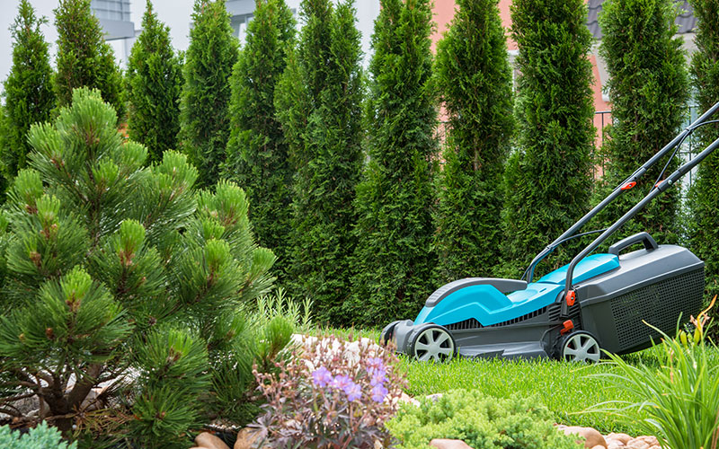 Best Corded Electric Lawn Mowers (Aug. 2019): Top 10 Reviewed