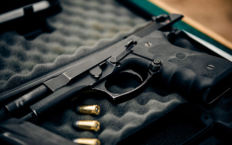 Top 10 Gun Safes (Feb. 2019): Reviews & Buyers Guide