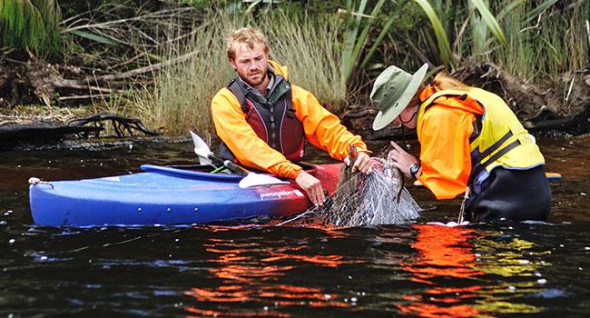kayaking accessories: Kayak Maintenance & Repairing Instruments