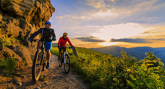 A Complete Guide to Mountain Bike Parts & Gears: What You Should Really Know