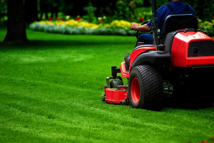 reel mower: Different Types of Lawn Mowers