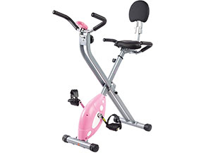 best recumbent exercise bike: If you're short on cash, get this instead
