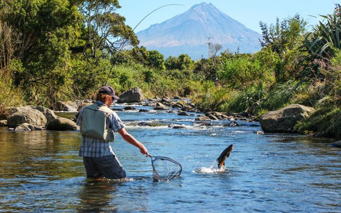 Fishing for beginners: What Fish To Fish For While Fishing