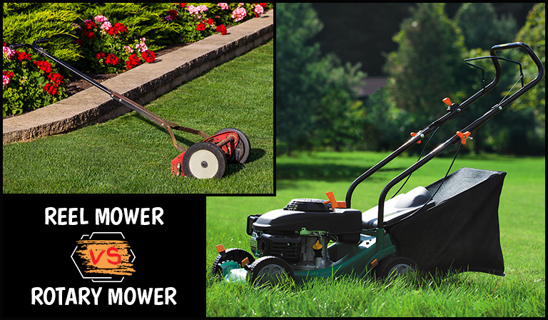 How to Choose the Best Lawn Mower for a Picture-Perfect Yard