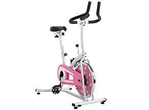 best spin bikes: A great budget pick waiting for you