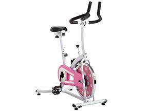 best budget spin bike