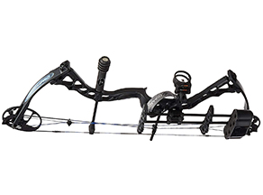 best compound bow: Any experienced archer might like this choice
