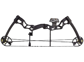 Heavy compound bow: Leader Accessories Compound Bow