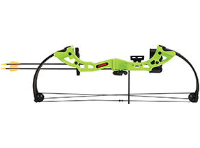 Lightest Compound bow: Bear Archery Brave Bow Set