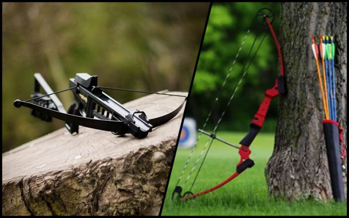 crossbow vs compound bow: Crossbow Vs Compound Bow