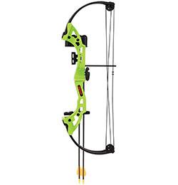 Bear Archery Brave Bow Set