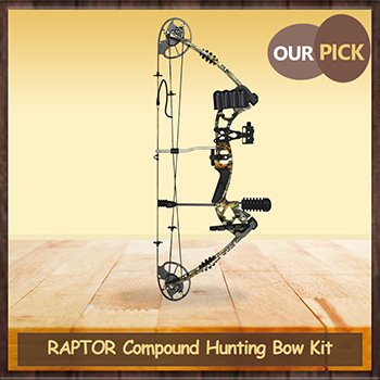 Compound Bow Review